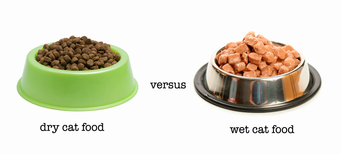 Wet Vs Dry Dog Food